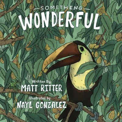 Something wonderful Book cover