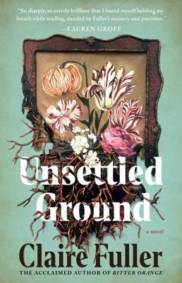 Unsettled ground : a novel Book cover