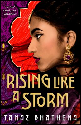 Rising like a storm Book cover
