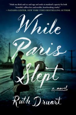While Paris slept : a novel Book cover