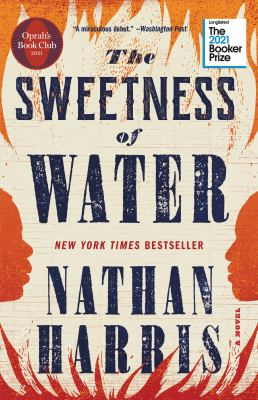 The sweetness of water : a novel Book cover