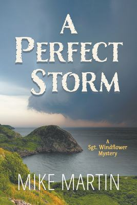 A perfect storm Book cover